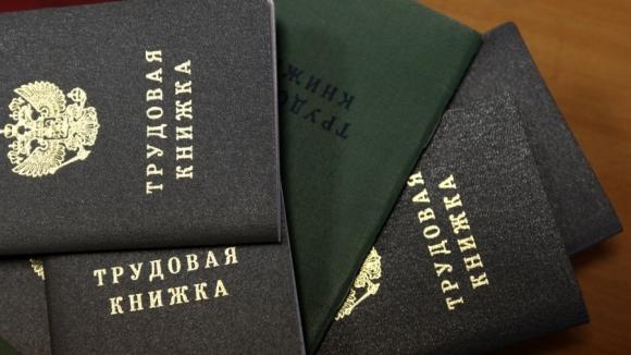 Работникам малых предприятий можно будет не заводить трудовые книжки